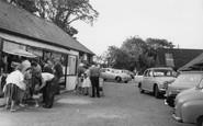 Berwick, Drusilla's Park, The Shops c.1965