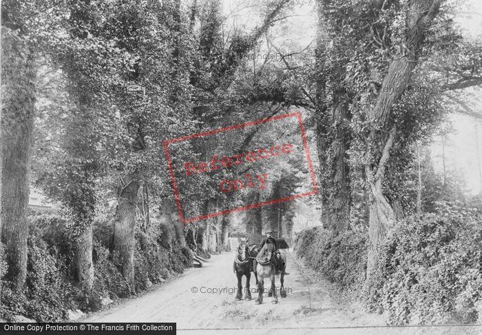 Betchworth Dorking Road 1907 Francis Frith