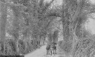Betchworth, Dorking Road 1907