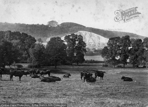 Betchworth, Hill From Spring Meadow 1906