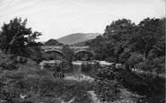 Betws-Y-Coed, Bridgeabove Swallow Falls c.1876