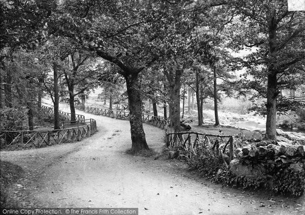 Betws Y Coed, The Woods, Pont Y Pair c.1880