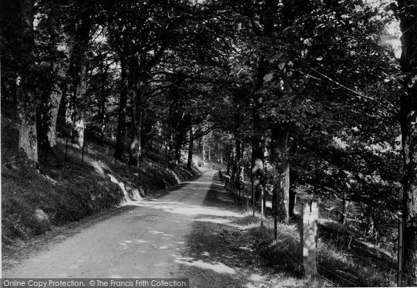 Beulah, Llwynowen Woods 1933