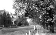 Beverley, New Walk 1894