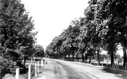 Beverley, New Walk 1900