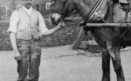 Bewdley, John Tolley's Horse c.1900