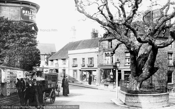 Bexhill, Old Town, Walnut Tree 1897