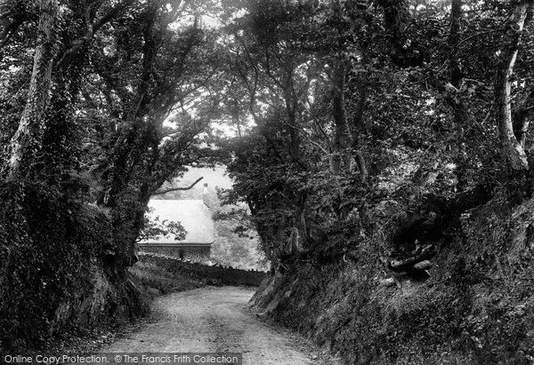 Bideford, Upcott Lane 1906