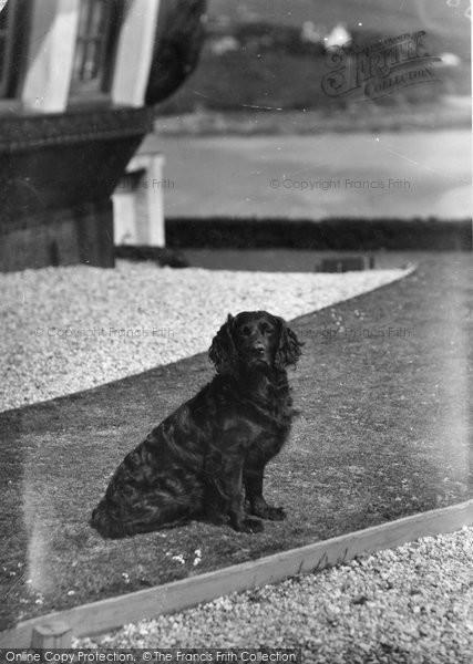 Bigbury On Sea, 'ruin' The Pet At  Burgh Island Hotel c.1935