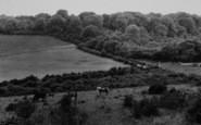 Biggin Hill, Jewels Wood And Salt Box c.1960