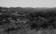 Biggin Hill, The Valley c.1960