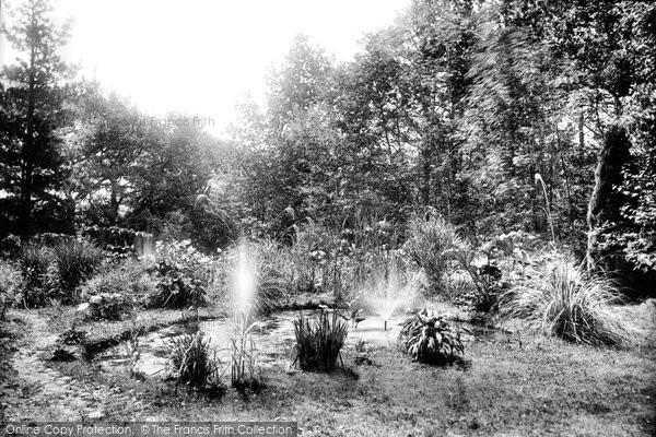 Bignor, Bignor Park Bog Garden 1908