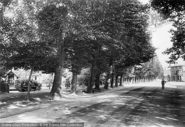Bishop's Stortford, The Causeway 1903