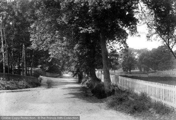 Bishops Stortford, Cricket Field Lane 1903