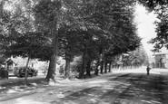Bishops Stortford, The Causeway 1903