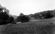 Bishopswood, On The Wye c.1950