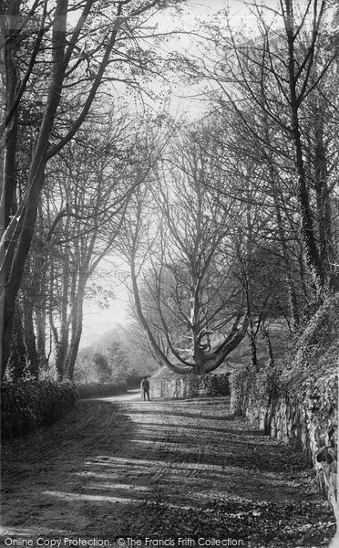 Blackgang Chine, In The Undercliff c.1890