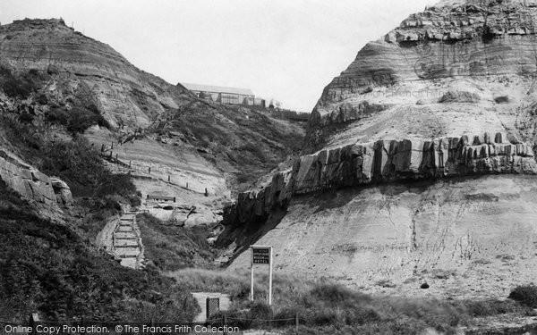 Blackgang, The Upper Chine c.1883