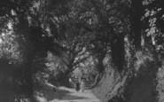 Bodinnick, A Lane c.1930
