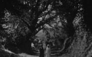 Bodinnick, Ladies In The Lane c.1930