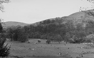 Bolton Abbey, View From The Entrance To Cavendish Woods c.1950