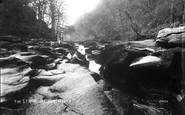 Bolton Abbey, Woods, The Strid c.1890