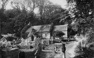 Bonchurch, St Boniface Old Church c.1880