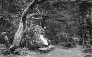 Bonchurch, The Landslip, Lovers Seat 1913