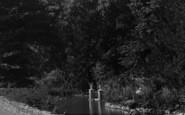 Bonchurch, The Pond 1913