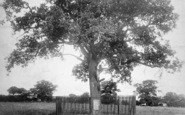 Boscobel House, Royal Oak 1898