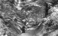 Boston Spa, Holy Lane 1893
