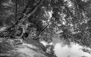 Boston Spa, Jackdaw Crag 1921