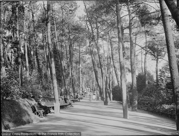 Bournemouth, The Pine Walk c.1907