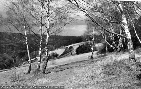 Box Hill, Above The Zigzag Road c.1955