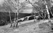 Box Hill, Above The Zigzag Road c.1955