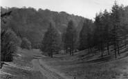 Box Hill, Happy Valley 1924