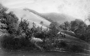 Box Hill, The Slopes 1903