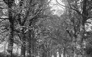 Brading, Ryde Road c.1880