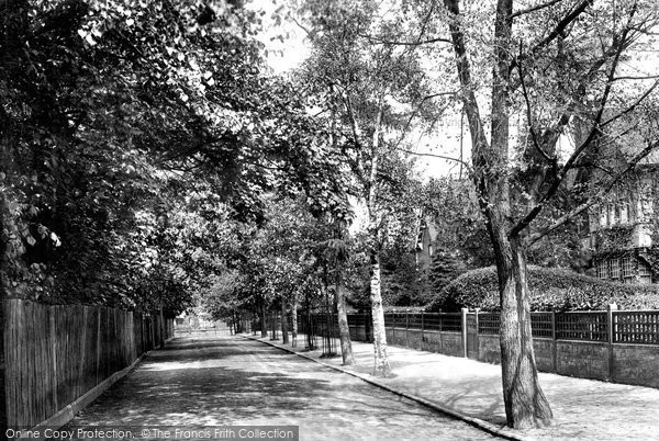 Braintree, The Avenue 1901