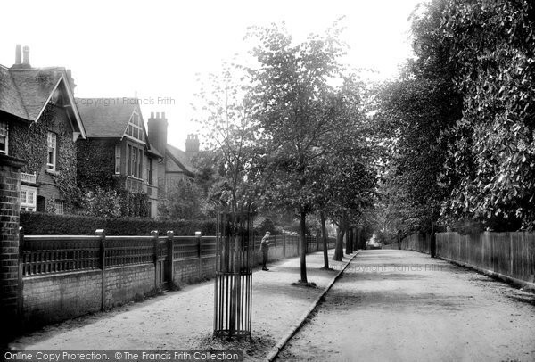 Braintree, The Avenue 1906