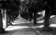 Brandon, Victoria Avenue c.1955