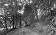 Braunton, Buckland Woods 1936