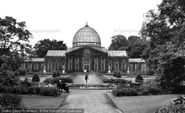 Brentford, Syon House Orangery 1953