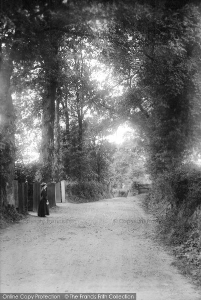 Brentwood, Honey Pot Lane 1906