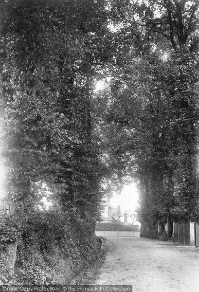 Brentwood, Honey Pot Lane 1907