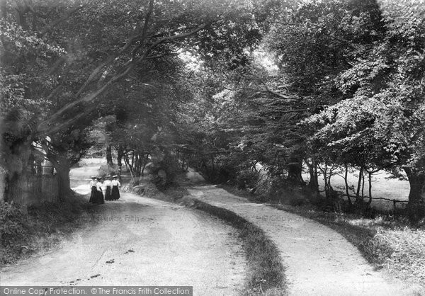 Brentwood, South Weald Lane 1906