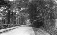 Brentwood, The Avenue 1903
