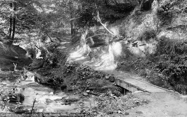 Bridge Of Allan, Cooksburn Path Woods  1899
