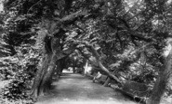 Bridgwater, Blake Gardens 1903