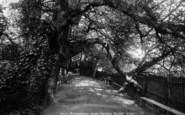 Bridgwater, Blake Gardens Avenue 1900